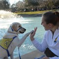 UCF gives service dogs and their handlers the green light to live on campus