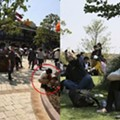 Chinese visitors welcome Disneyland to town by defecating in the bushes
