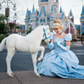 Cinderella has a new fluffy pony at Disney World