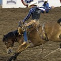 Silver Spurs Rodeo celebrates 75 years of bull-riding, bronco-busting fun