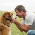 Opening this week: <i>A Dog's Purpose</i>, <i>Gold</i>, and more