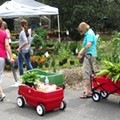 Harry P. Leu Gardens hosts annual spring plant sale this weekend