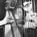 Avant harpist Zeena Parkins has spent a lifetime redefining  what is possible in the heard and unheard