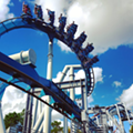 Today is your last chance to ride Universal's Dragon Challenge