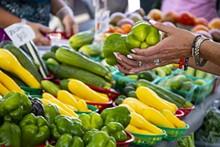 gal_parramore_farmers_market_adobestock_212363940.jpeg.jpg