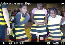 e0f6492f_insect-expo.jpg