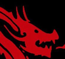 0cd4bace_dragonhead.jpg