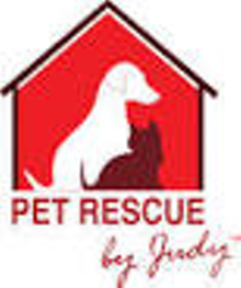 e52768ba_judy_s_logo.png