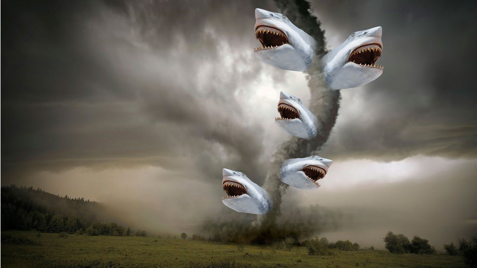 We're No. 1 in sharks and tornadoes!