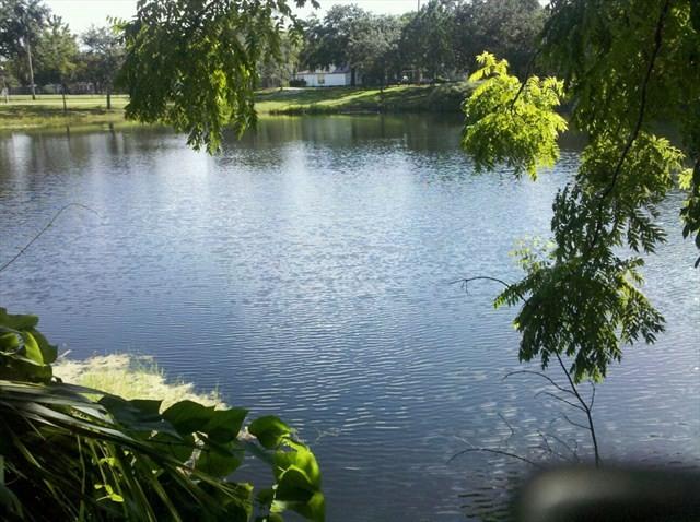 Winter Park sinkhole via floridamemory.com