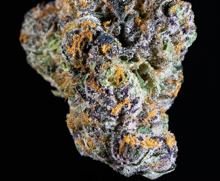Gelato 41 by Alien Labs, first-place winner in the pre-roll category. - MATTIO COMMUNICATIONS