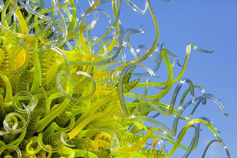 Dale Chihuly Sol del Citrón (detail), 2014, 15 x 14½ x 14 feet. Fairchild Tropical Botanic Garden, Coral Gables, Florida. - © 2021 CHIHULY STUDIO. ALL RIGHTS RESERVED.