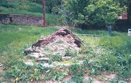 art2_burialmoundwebonly_31.jpg
