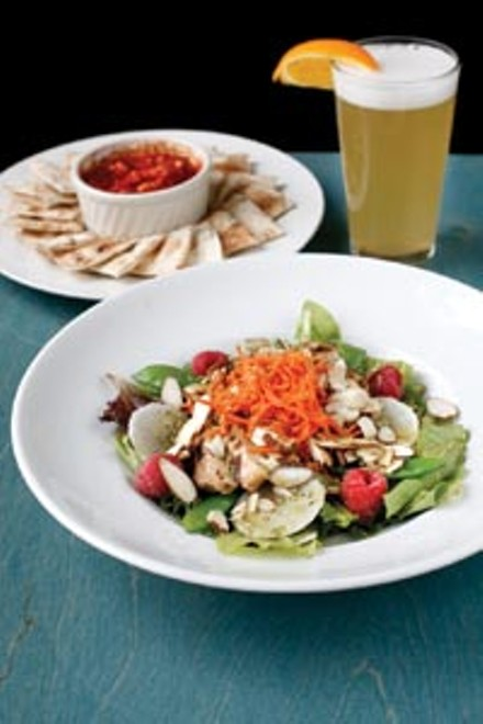 Asian grilled chicken salad and hummus - HEATHER MULL
