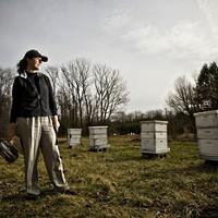 Author, Beekeeping Expert Speaks Here Tomorrow