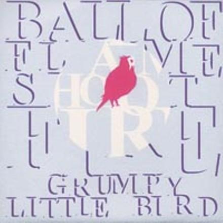 02_0001_cd1_grumpy_little_bird.jpg