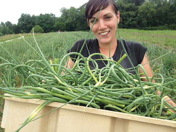 Dana Waelde carrying garlic scapes at Blackberry Meadows