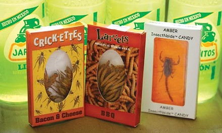 Exotic snacks at Reyna Foods - HEATHER MULL
