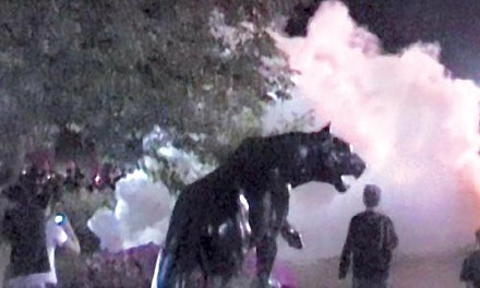 footage from G-20 confrontations with police, as seen in Keith deVries' documentary 'democracy 101'