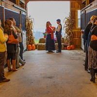 Gettin' Hitched: More couples heading to the farm for a unique wedding experience