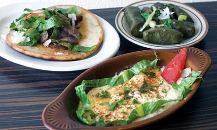 Gyro sandwich, humus and stuffed grape leaves - HEATHER MULL