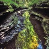A local photographer's new book captures the often surprising beauty of the region's state parks.