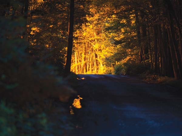 In a photo by Nina Berman, taken in Springville, Susquehanna County, the glow from a methane flare illuminates an otherwise darkened road.