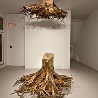 "Janine Antoni's ""Graft"" (detail: first floor view)"
