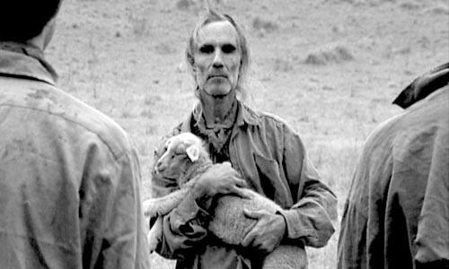 """Lamb-a-nation: """"Divide,"""" by John Gillies"""