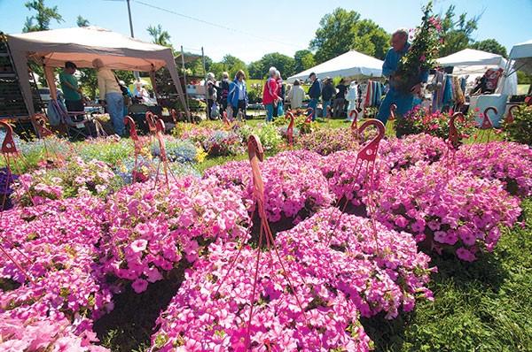 May Market gardening