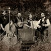 """MP3 Monday: The Armadillos - """"Pennyroyal Flowers"""""""