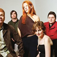 The New Pornographers, as seen on TV