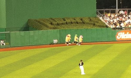 Pittsburgh Pirates Pierogi Race