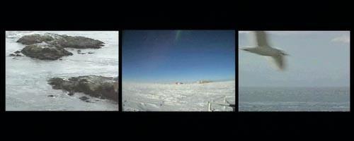 "Poles apart: Michael Sherwin's three-channel video installation ""Strange Attractors."""