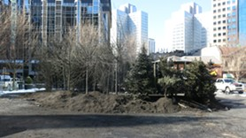 """""""A Winter Landscape"""" under construction yesterday - PHOTO BY BILL O'DRISCOLL"""