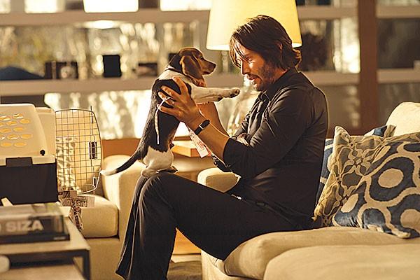 Puppy love: Keanu Reeves