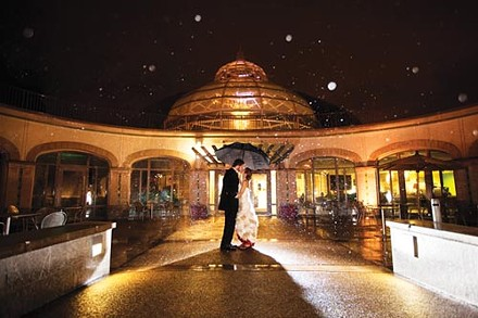 Romance gets a green twist at Phipps Conservatory. - PHOTO COURTESY OF SANDY YETTER, RED LOTUS PHOTOGRAPHY