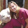 Safe Haven: Sanctuary will take in unwanted animals, educate about meatless dining options