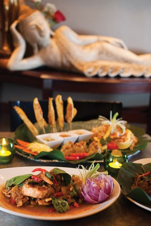 Thai to try: a selection of appetizers from Nicky's Thai Kitchen - PHOTO BY RENEE ROSENSTEEL