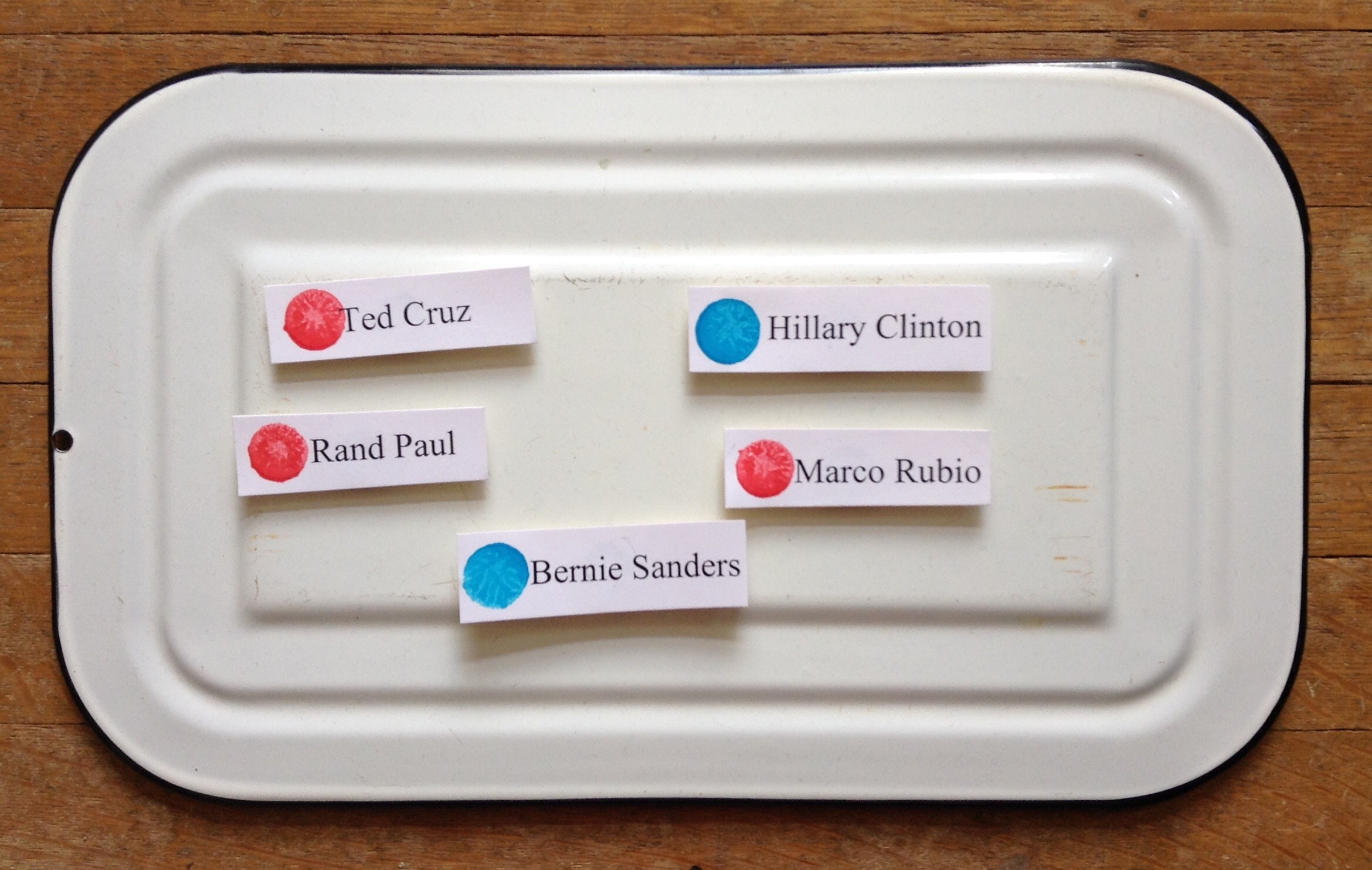 the magnetic chart of 2016 primary awesomeness welcomes bernie