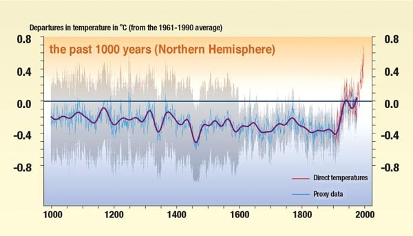 "The offending instrument: The 2001 version of the ""hockey stick"" graph showing anomalously warm late-20th-century temperatures."