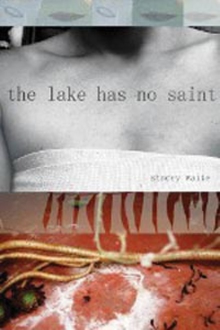 03_art_side_book_lake.jpg