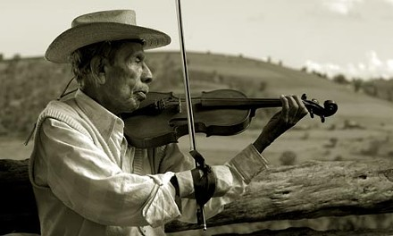violin08.jpg