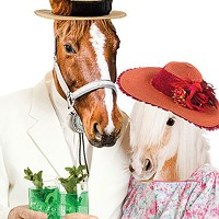 Which Derby fashion will finish first?
