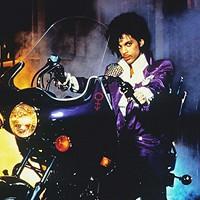 <i>Purple Rain </i>