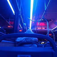 (More than) kind of blue inside a 91 bus