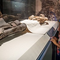<i>Mummies of the World</i>