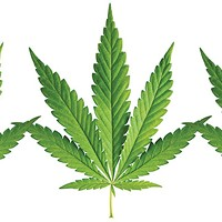 Medical marijuana is coming to Pennsylvania
