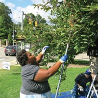 412 Food Rescue takes up urban gleaning