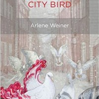 Arlene Weiner's new poetry collection emphasizes body over mind